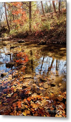 Metal Print featuring the photograph Orange Leaves by Iris Greenwell