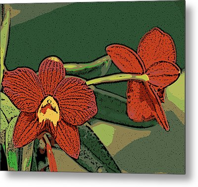 Orange Orchids Metal Print by Ann Tracy