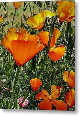 Orange Poppies Metal Print