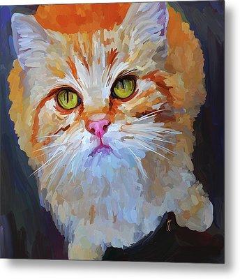 Orange Tabby Cat - Square Metal Print by Jai Johnson