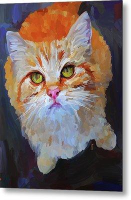Orange Tabby Cat Metal Print by Jai Johnson