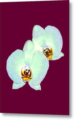 Orchid Art 5 Purple Zurich 2000 Jgibney The Museum Zazzle Gifts Metal Print by jGibney