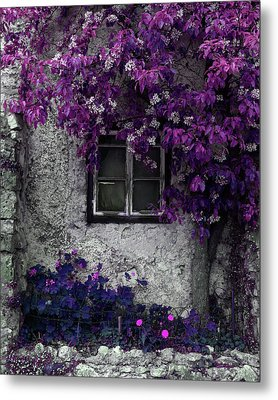 Orchid Vines Window And Gray Stone Metal Print by Brooke T Ryan