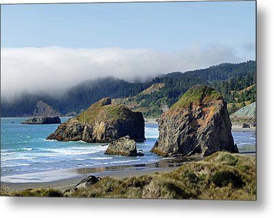 Oregon Coast Brookings 4 Metal Print