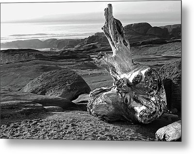 Oregon Coast Yachats 5 Metal Print