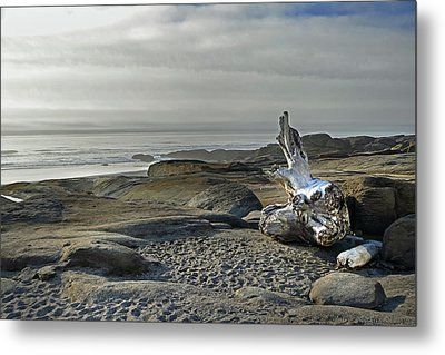 Oregon Coast Yachats 6 Metal Print