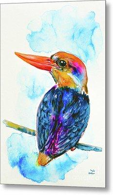 Oriental Dwarf Kingfisher Metal Print by Zaira Dzhaubaeva