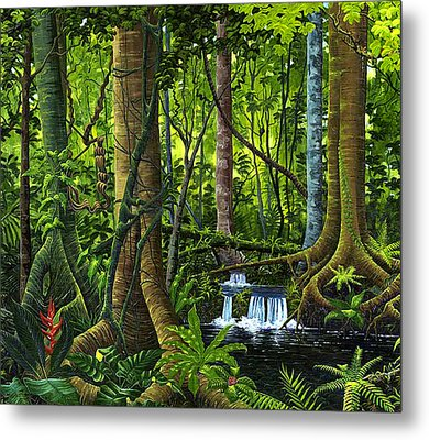 Osa Peninsula Rainforest Metal Print
