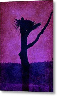 Osprey Nest Silhouette - Manasquan Reservoir Metal Print by Angie Tirado