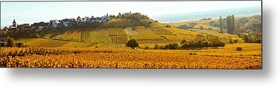 Ostheim Village And Vineyards Metal Print by Panoramic Images