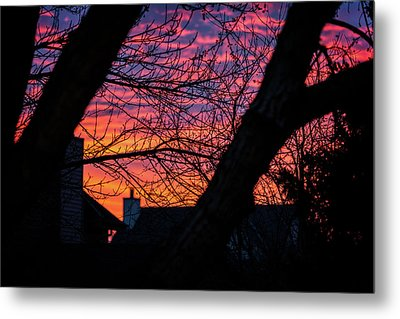 Out My Back Window Metal Print