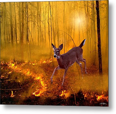 Out Of Egypt Metal Print by Bill Stephens