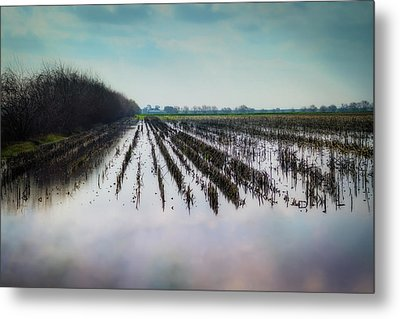 Out On The Delta Metal Print