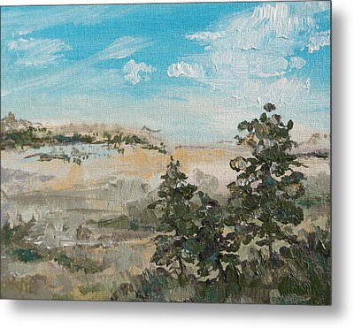 Outlook Metal Print by Sandy Tracey