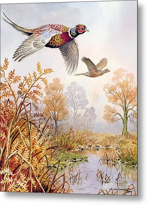 Over The Fen Metal Print by Carl Donner