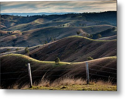 Over The Back Fence Metal Print