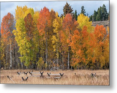 Oxbow Fall Colors Metal Print