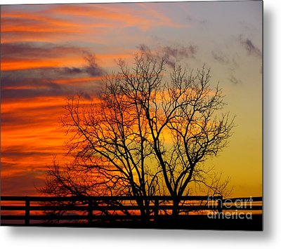 Painted By The Sun Metal Print
