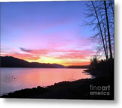 Metal Print featuring the photograph Painted Sky by Victor K