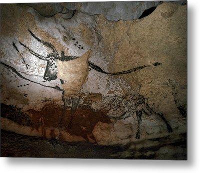 Paleolithic Art Of Bulls On Calcite Metal Print