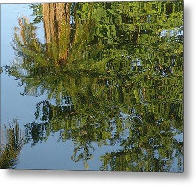 Palm Mirror Metal Print by Florene Welebny