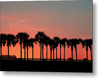 Metal Print featuring the photograph Palm Tree Sunset by Joel Witmeyer