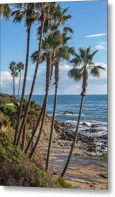 Metal Print featuring the photograph Palm Trees At Monument Point Laguna Beach by Cliff Wassmann
