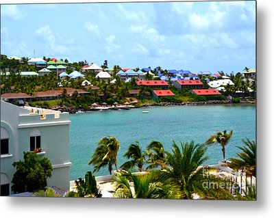 Palm Trees Of Oyster Bay Metal Print by Karen Francis