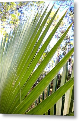 Metal Print featuring the painting Palmetto 1 by Renate Nadi Wesley