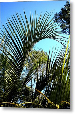 Metal Print featuring the painting Palmetto 2 by Renate Nadi Wesley