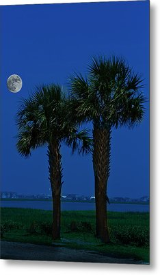 Metal Print featuring the photograph Palms And Moon At Morse Park by Bill Barber