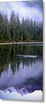 Pamelia Lake Reflection Metal Print by Albert Seger