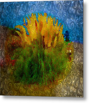 Metal Print featuring the photograph Pampas Grass by Iowan Stone-Flowers