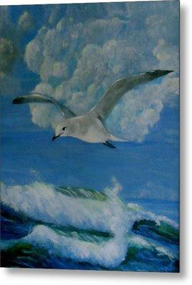 Panama City Seagull Metal Print