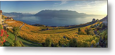 Panorama On Lavaux Region, Vaud, Switzerland Metal Print