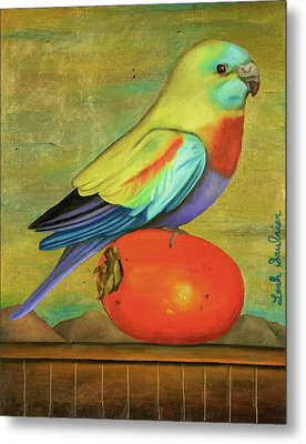 Parakeet On A Persimmon Metal Print