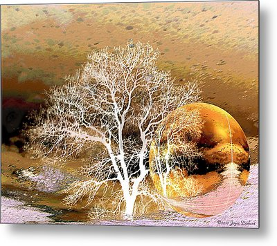 Metal Print featuring the photograph Parallel Worlds by Joyce Dickens