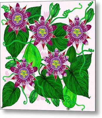 Passiflora Alata Metal Print
