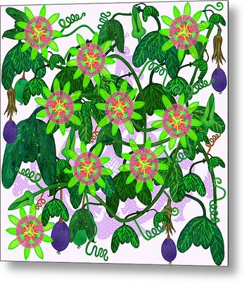Passiflora Mexicana Metal Print