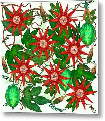 Passiflora Vitifolia Metal Print