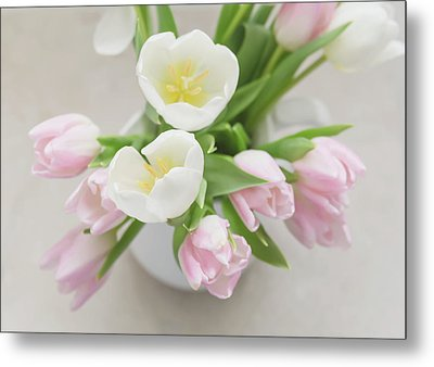 Metal Print featuring the photograph Pastel Tulips by Kim Hojnacki