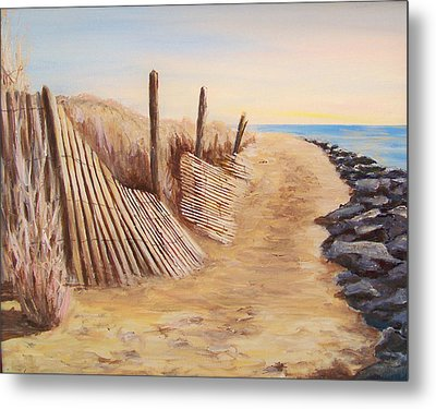 Path To Roosevelt Inlet Metal Print