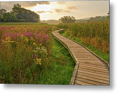 Path To The Light Metal Print by Angelo Marcialis