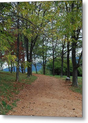 Metal Print featuring the photograph Pathway by Eric Liller