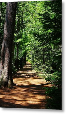 Pathway To Peacefulness Metal Print by Bruce Bley
