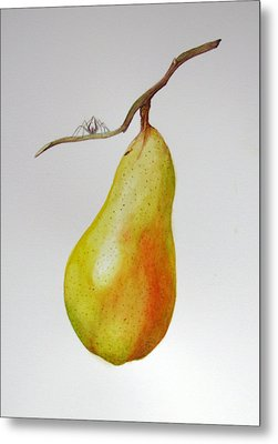 Metal Print featuring the painting Pear With Spider by Margit Sampogna