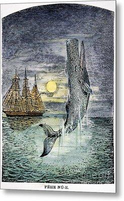 Pehe Nu-e: Moby Dick Metal Print by Granger