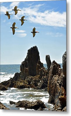 Pelican Inspiration Metal Print by Gwyn Newcombe