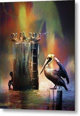 Pelican Ways Metal Print