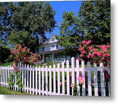 Peonies And Picket Fences Metal Print